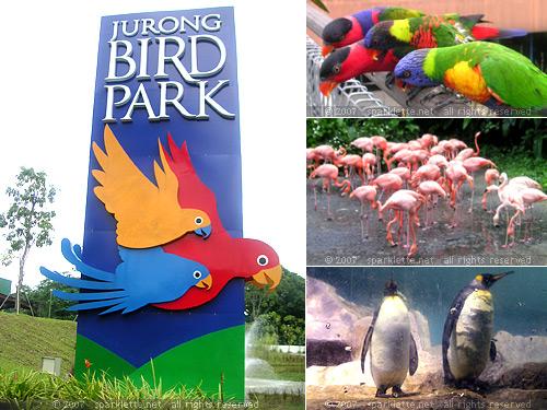 455_birdpark